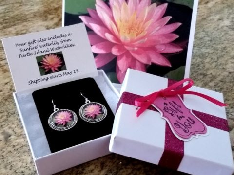 Waterlily Jewelry